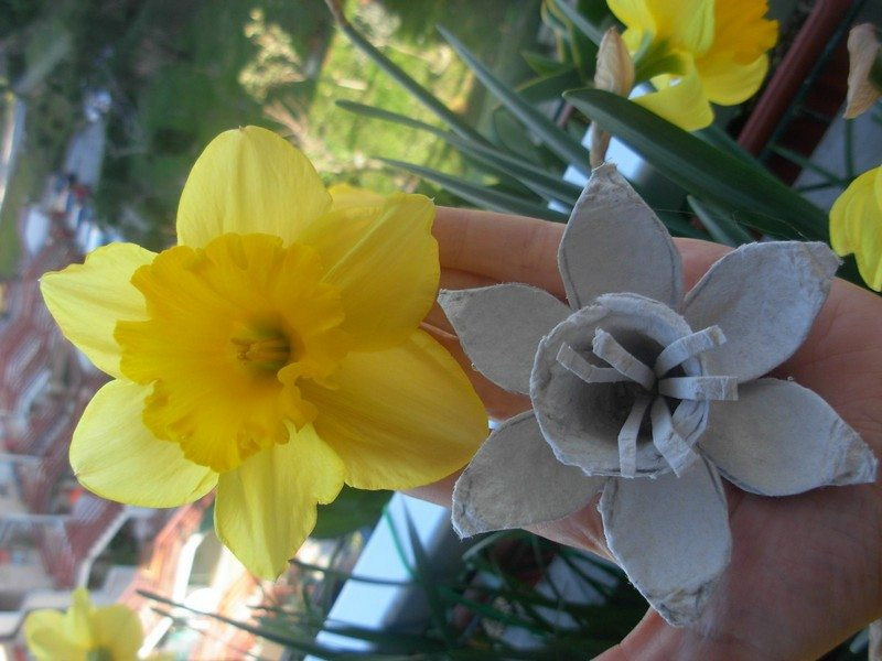 Egg-Carton-Daffodils7